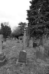 Enid Emily Cardain (IanAWood) Tags: pinner londoncemeteries londonboroughofharrow walkingwithmynikon nikkorafs24mmf14g pinnercemetery nikondf