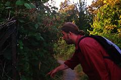 (The Integer Club) Tags: film 35mm yashicaelectro35gt 2016 london uk summer sebastian foraging brambles blackberries berrypicking sunset