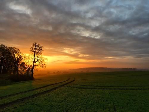 Hampshire Fields Sunset
