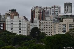 DSC_1491 (Machtigen) Tags: selva pedra city são paulo ibirapuera