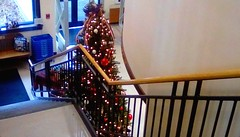 Christmas tree - SFS. (Maenette1) Tags: christmas tree stairs spiespubliclibrary menominee uppermichigan saturdayforstairs flicker365