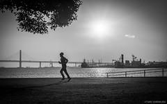 winter running (hakuta2016) Tags: d750 nikon 28mm cool street モノクロ 海 city tokyo 人 日本 白黒写真 冬 silhouette blackandwhite black urban morning japan emotion 横浜