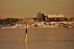 IMG_0096 (www.ilkkajukarainen.fi) Tags: finland suomi europa cold winter suomi100 reimari beacon sea mark meri merkki ice jää mökki talvi stuga tupa punainen saari island kallio ranta