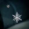 Snowflakes (ingridvg) Tags: snowflake crystal symmetry ice snow winter dendrites frozen