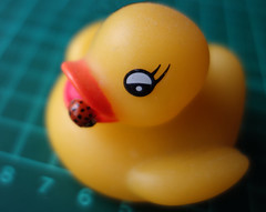 Lady Duck (Lydie's) Tags: plasticduck ladybird dusty dust macro yellow eye beak cuttingmat darkgreen sonydscrx100