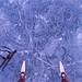 Cracks in the Ice… (deanspic) Tags: nordicskating wildskating ice cracks cracksintheice texture marbled skates byfilter g3x winter longsault ontario