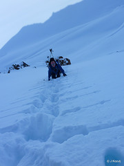 skiing in the Wrangells - St elias in 2008