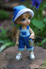 (likabalu) Tags: doll tiny remy fairyland pipi darak littlefee