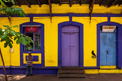Colors. Goa, India (Marji Lang Photography) Tags: street travel blue people woman india house man building bird colors yellow composition walking photography colorful purple couleurs colonial goa violet streetphotography documentary style streetlife streetscene crow setting raven portuguese oneperson inde panjim streetshot panaji travelphotography portuguesecolonial goan colonialstyle colorfulhouse 2013 colonialera streetcomposition marjilang