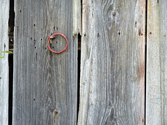 Twin Oaks Barn: Rusty Handle (Wits End Photography) Tags: door wood old building abandoned metal architecture barn rural america circle outside illinois rust midwest alone exterior outdoor decay farm country nail neglected entrance rusty structure pale wear ring doorway faded forgotten american round worn oxidation lone weathered opening portal discarded forsaken disc left solitary rejected corrosion entry bleached faint outcast washedout dumped castaside discolored