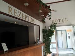 IMG_3717 (annaotto21) Tags: hotel see pilze sonne wald steinbruch sonder eichsfeld finnhtten alteneugewerdenefinnhtten hotelreifenstein