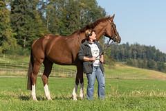 DSC08247_s (AndiP66) Tags: horse mark sony sp ii di if af alpha tamron pferde 77 pferd equestrian f28 ld 70200mm tamron70200 andreaspeters tamronspaf70200mmf28dildif 77m2 a77ii ilca77m2 77ii slta77ii