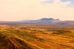 Mt Sonder Central Australia aerial shot (lacycat) Tags: mt sonder
