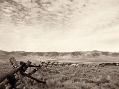 Idaho Farm Fence (erykah36) Tags: sky blackandwhite usa white black nature field clouds america fence landscape open view unitedstates farm meadow hills idaho prairies hilly vast