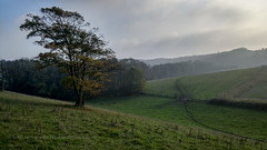 South Downs - Stanmer to Ditchling Beacon (Scotty H..) Tags: landscape brighton phonepic beacon stanmer ditchling