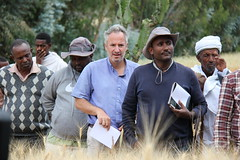 Farmers at the field Day, Ethiopia (Bioversity International) Tags: field farmers ethiopia bioversityinternational seedsforneeds eastandsouthernafrica cgiarorg cgiarresearchprogramonclimatechange agricultureandfoodsecurity