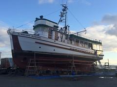 Port Townsend WA - Shipyard - MV HECATE RANGER on the hard (BlackShoe1) Tags: boat woodenboat woodboat hecateranger canadianforestservice
