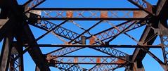X (photography_isn't_terrorism) Tags: trestle bridge rust rivets braces geometry rusty x rusted bo beams decayed supports orangeandblue weatherbeaten railroadtrestle riveted borailroad