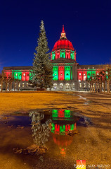 Rainy Season's Lights (Nualchemist) Tags: sanfrancisco cityscape cityhall clouds urban water buildings illumination lights cloudy wideangle panoramic reflection twilight bluehour night nightsky architecturalbeauty architectural landmark majestic vantagepoint slowshutterspeed alluring illuminating iconic exterior sunset architecturalphotography california building architecture eveninglight winter sky front red colorful green christmas christmasimage dreamy colorfullights colorfulillumination evening sanfranciscodowntown nightcityscape lighttrails lively decoration decorative christmasdecoration christmastree yellow blue trafficlights street cars season seasonal holidayimage holiday magical verticalcomposition vertical