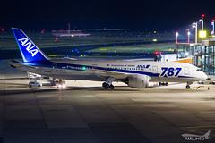All Nippon Airways - B788 - JA806A (1) (amluhfivegolf) Tags: eddl düsseldorfairport dus flughafendüsseldorf amluh5g amluhfivegolf avgeek aviation plane