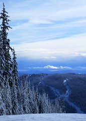 Mount Morissey from Tod Mountain (Ruth and Dave) Tags: sunpeaks skiresort mountmorissey todmountain piste skirun tree snow clouds weather weatherphotography