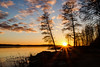 2016 (Joni Mansikka) Tags: winter nature outdoor landscape sea seaside bay trees silhouettes reflections sunset light sky clouds colours paimio suomi finland