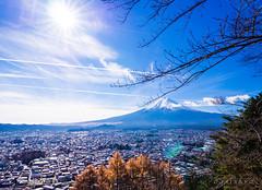 PC050668 (oasiskyo小海豹) Tags: 新倉山淺間公園 富士山 olympus em10 12mm f14