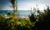 Formentera - Beach Voyeur ( Peppedam -www.glam.vision) Tags: formentera spain island beach summer holiday travel wild voyeur nikond3 nikkor2470 giuseppedamico outdoor colors europe paradise sand sea mediterranean baleari