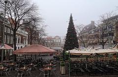 Grote Markt (Jan Kranendonk) Tags: grotemarkt denhaag kerstboom kerst mist kerstmis