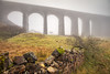 Ribblehead Viaduct in the Mist, Yorkshire Dales (MelvinNicholsonPhotography) Tags: ribbleheadviaduct railway arches viaduct yorskhire yorkshiredales mist misty stonewall wall stone grass tree gitzo manfrotto canonuk mindshiftgear melvinnicholsonphotography landscapephotography