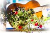 Guitar floral (vinnie saxon) Tags: guitar flower stilllife bokeh art decor nature light nikoniste nikon d600 creative
