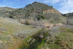 Reservoir drainage channel. (openspacer) Tags: lospadresnationalforest montereycounty water