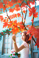 Mèo (Sài gòn-01665 374 974) Tags: snor sony sigma photography photographer flickr digital new featured light art life colorful colour colours photoshop blend asia camera sweet lens artist amazing bokeh dof depthoffield blur 35mm portrait beauty pretty people woman girl lady person