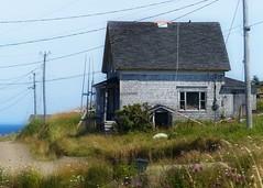 House by the Sea (nikagnew) Tags: ocean old sun house beach grass wind weathered grasses breeze rundown longislandns brierislandns