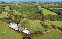 361 Humpty Back Rd, Upper Coopers Creek NSW