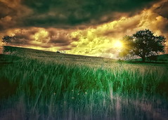 Between dream and reality (* landscape photographer *) Tags: light sunset italy tree nature alberi clouds europe flickr tramonto nuvole valle natura cielo sa sasi nikkor luce paesaggio salvo raggi sogno lucania 2015 dipinto creazione immagina realt nikond90 landscapephotographer immenso sinni roccanova montalbanojonico salvyitaly