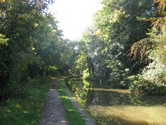 151009_08 (Bushy Park Boy) Tags: trees walking canals warwickshire midlands longwalks onlyconnect coventrycanal b2e beestontoexeter