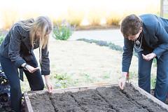 USDA and NASA Partnership Event (NHQ201510050024) (NASA HQ PHOTO) Tags: nasa seeds dirt planting usda raisedbed peoplesgarden redromainelettuce davanewman krystaharden aubreygemignani