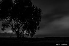 Quando calano le Tenebre (Fabio75Photo) Tags: pace nebbia calma buio paura tenebre oscurit quiete