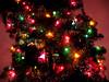 121225-09 (knittinjen) Tags: christmas christmastreedecorations parentsinlittlefalls