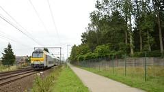 NMBS M6 stuurstand  Belsele (Tren di Cdrico) Tags: station train ic belgium perron belgi alstom m6 trein intercity bombardier sintniklaas belsele dubbeldekker oostvlaanderen nmbs sncb spoorlijn l59 stuurrijtuig