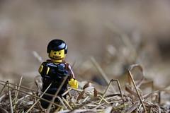Sur la paille (pylote) Tags: de la lego autoportrait bretagne bosse aventure lgo