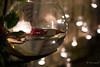 la nit de la llum (torresmoll) Tags: nocturna bokeh luces navidad
