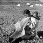 """Inuit woman """"Josie"""" chewing sealskin to soften it for making kamiits (boots), Kinngait, Nunavut / Josie, une femme inuite, mâche une peau de phoque pour l'assouplir avant d'en faire des kamiit (bottes), à Kinngait, au Nunavut thumbnail"""