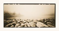 River Rhine (zonevde) Tags: zeroimage zeroimage612b 6x12 acros xtol lith digitallith pinhole fujineopanacros epson4990