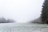 Weiss / Grün (Jan Čmárik) Tags: 6d cmarik canon eos cmrk landschaft landscape weiss white fog nebel schnee snow first trees tree baum bäume feld field sky himmel natur nature