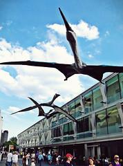 2010-06-27aa History Overhead ([Ananabanana]) Tags: nikon d40 gimp photoscape uk unitedkingdom london southbank thames riverthames 1855mm 1855 nikkor nikon1855mmkitlens nikon1855mm nikonafsdx1855mm nikkor1855mm nikkorafsdx1855mm nikonistas nikonista model dinosaur pterosaur pterosaurus quetzalcoatlus quetzalcoatl reptile extinct dragon triassic jurassic cretaceous paeleontology
