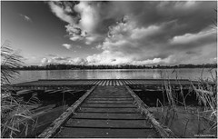 Binnenmaas 2 (Rens Timmermans) Tags: canon5dmk3 sigma1224f4556dg blackwhite hoekschewaard holland water landschap niksilverefexpro