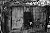 (casildaezquerro) Tags: blanconegro blackwhite monochrome monocromatico landscape puerta door bike bicycle bicicleta