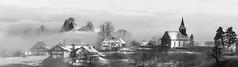 Sternenberg (schneider-lein) Tags: mono monotone monochrome blackwhite scharz weiss landscape landschaft nature natur foggy frosty earlymorning misty hazy smokey grey grau normalobjektiv carlzeiss fe5518za sonyilce7rm2 alpha7rm2 a7rii sternenberg schweiz switzerland suisse svizzera panorama pano clouds wolken baum tree winterwonderland kalt